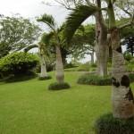 東南植物楽園(2)